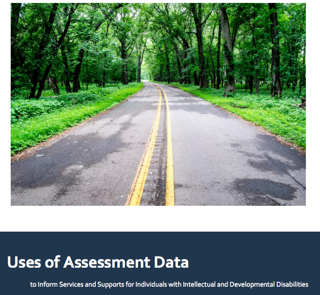 Michigan DHHS Uses of Assessment Data